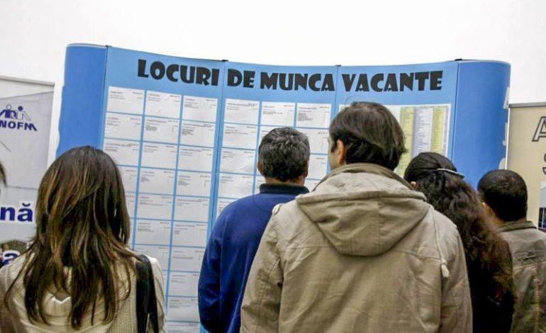 E de muncă dar şi 8500 şomeri în Argeș – 1500 sunt tineri intre 18 şi 28 ani