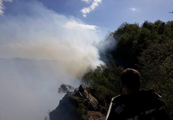 CASCADORII RÂSULUI ! A cui este pădurea incendiată de la Poienari ! Chiriloiu nu stie si se contrazice !