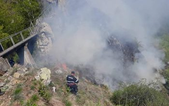INCREDIBIL ! Cauza incendiului de la Cetatea Poienari, URŞII SUNT DE VINĂ !?!