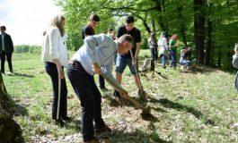 De Ziua Pământului,elevii şi profesorii din Mioveni au plantat puieţi de stejar și frasin