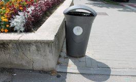 Lipsa cosurilor de gunoi dau batai de cap argesenilor...