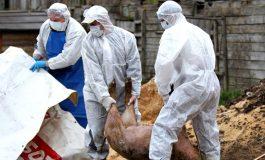 PESTA PORCINĂ ÎN ARGEŞ ! Toate animalele suspecte trebuie sacrificate - Masuri drastice la Corbeni si alte comune vecine
