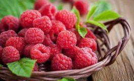 Consumul de zmeură consolidează sistemul imunitar