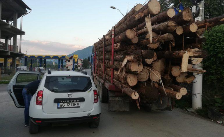 Mafia lemnului călcată de Politie si Garda Forestiera