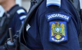 Carmen Dan: Şase cazuri identificate în care 10 jandarmi sunt posibili autori ai unor fapte penale