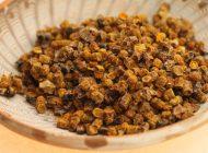 'Pâinea albinelor' – minunea naturală care te scapă de medicamente