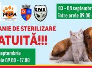 NU RATA! O nouă campanie sterilizare gratuită a câinilor și pisicilor