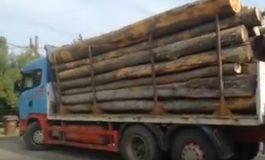 VIDEO Captură incredibilă la Vidraru ! Lemne furate cu un camion cu numere false
