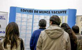 Criză de personal ! 642 de locuri de muncă în Argeş