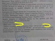 """DOCUMENTE ! Un primar din Argeş a """"tocat"""" miliarde din banul public pentru plimbări externe"""