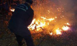 Incendii in serie in Arges - Flăcările au ajuns in padure