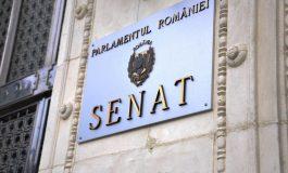 Senatul a votat împotriva parteneriatelor civile