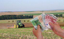 15.000 de fermieri argeşeni vor primi bani în avans de la APIA