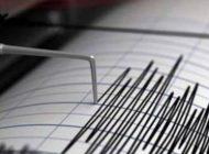 ALERTA! Cutremur puternic in România ! Argeșul atins de unda seismică