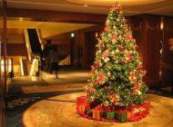 Bradul de Crăciun: natural sau artificial? Avantaje şi dezavantaje