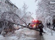 Prima zăpadă, probleme mari in Arges - Copaci căzuți si accidente
