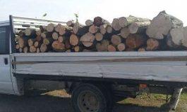 Bărbat din Sălătrucu prins cu lemne furate şi fără permis de conducere