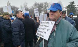 Protest al medicilor veterinari în București