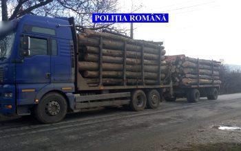 Prinşi cu camionul cu lemne fără documente !  S-A CONFISCAT TOTUL