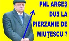 JIHAD ÎN PNL Argeş ! Miuţescu îşi face ţăndări un coleg de partid: George Păltineanu, fost şef DIPI, apelează la metode de intoxicare securiste
