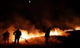 ACUM! Incendii la Curtea de Argeș și Albești