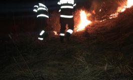 VIDEO ACUM! Ard zeci de hectare - Pompierii in alertă