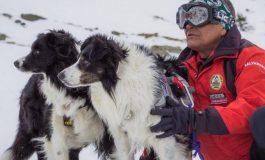 La Cabana Capra Transfăgărășan, începe Stagiul Național de Formare a Unităților Canine de Intervenție la Avalanșă