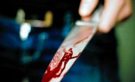 CRIMĂ LA VALEA IAŞULUI ! Soacra şi-a înjunghiat ginerele