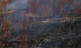 ACUM! Incendii la Curtea de Argeș și alte localități