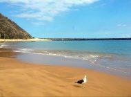 Cele mai frumoase cinci plaje din Europa în 2019. Care destinaţie ocupă primul loc în top