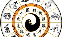 Zodiac CHINEZESC saptamana 19-25 AUGUST 2019