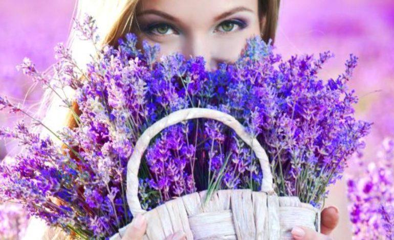 Horoscopul Primăverii 2019: Va inflori si zodia ta?