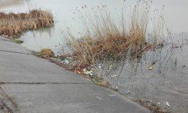 Nu se-ncumetă nimeni să adune mizeria de pe malul lacului din vecinătatea Sălii de Sport?
