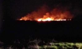 ACUM! Incendiu la Băiculești - Flăcări uriașe