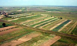 Piața terenurilor agricole din Argeş mustește de oferte. Iată prețurile cerute de vânzători!