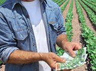 DE INTERES ! Cum poti lua 15.000 euro pentru dezvoltarea fermelor mici - Începe sesiunea de depunere a proiectelor