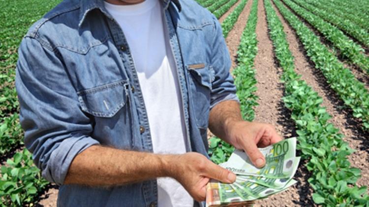 DE INTERES ! Cum poti lua 15.000 euro pentru dezvoltarea fermelor mici – Începe sesiunea de depunere a proiectelor