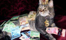 Ce inseamna cand visezi bani. E de bine sau de rau?