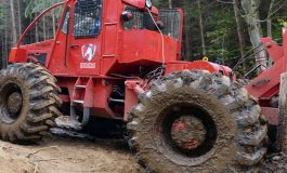 ACUM ! Muncitor la pădure rănit grav la exploatarea forestieră