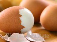 Cojile de ouă, ideale pentru sănătatea oaselor