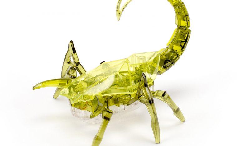 ADEVARURI DUREROASE despre Scorpion