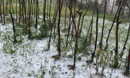 VIDEO ACUM! Grindina a albit pământul la Malureni și Tutana - Pagubele uriașe estimate de proprietari