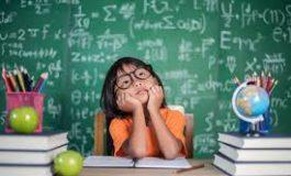 Afla mai multe despre curricula educationala a scolii Seva
