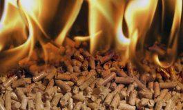 Peleții de lemn, biocombustibilul anilor ce vin