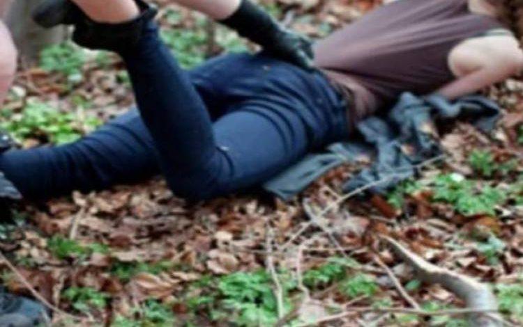 ACUM, CAZ ȘOCANT LA CURTEA DE ARGEȘ – Tânără violată de un recidivist aproape de centrul orasului !