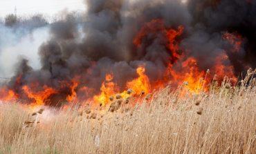 VIDEO, ACUM ! Incendiu puternic ! Doua hale in pericol