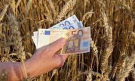 RADAR ECONOMIC: APIA începe plata în avans a fermierilor
